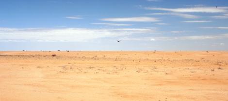 Chalbi_Desert_Panorama - Filibero Strazzari